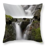 Cascading Creek In Temperate Rainforest Throw Pillow