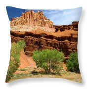 Castle In The Capitol Throw Pillow