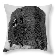 Castle Of The O Briens - Ruins - Near Galway Ireland - C 1901 Throw Pillow