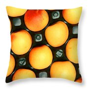 Castlebrite Apricot Throw Pillow by Photo Researchers