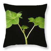 Castor Bean Plant Throw Pillow