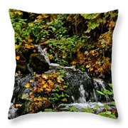 Casual Creek Throw Pillow