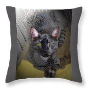 Cat Art Of Relaxing Throw Pillow