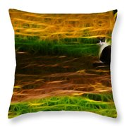 Cat In A Strange Place Throw Pillow
