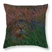 Cat In The Grasses Throw Pillow