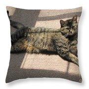 Cat Life Throw Pillow