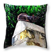 Cat On Medieval Wall Throw Pillow