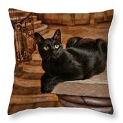 Cat On Pillar Throw Pillow