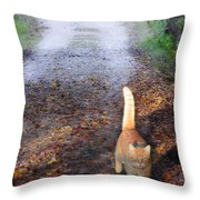 Cat On The Road Again Throw Pillow