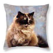 Cat Portrait Of A Cat Throw Pillow