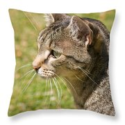 Cat Portrait On A Green Lawn Throw Pillow