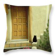 Cat Post Throw Pillow