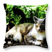 Cat Relaxing In Garden Throw Pillow