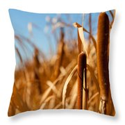 Cat Tails Throw Pillow
