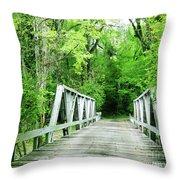 Catalpa Plantation Bridge Throw Pillow