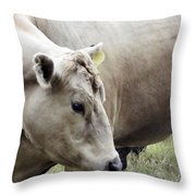Catch My Good Side Throw Pillow