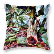 Catoctin Cliff Trail Throw Pillow