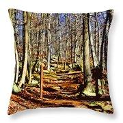 Catoctin Trail Throw Pillow