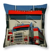 Catr0270-12 Throw Pillow