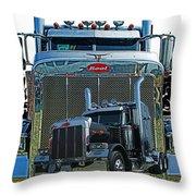 Catr0348-12 Throw Pillow