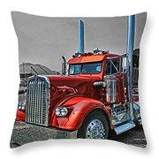 Catr0395-12 Throw Pillow