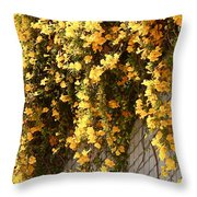 Cat's Claws Vine Throw Pillow