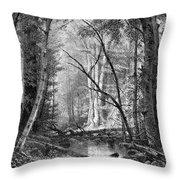 Catskill Brook, 1873 Throw Pillow