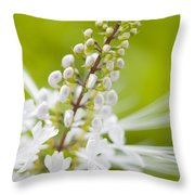 Cat'swhiskers Throw Pillow