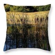 Cattail Duck Cover Throw Pillow