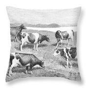 Cattle, 1888 Throw Pillow