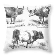 Cattle Breeds, 1856 Throw Pillow