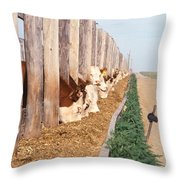 Cattle Feeding Throw Pillow