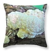 Cauliflower Mushroom On Log Throw Pillow