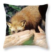 Cautious Red Fox Throw Pillow
