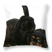 Cavalier King Charles Spaniel And Rabbit Throw Pillow