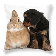 Cavapoo Pup And Sandy Netherland-cross Throw Pillow