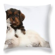 Cavapoo Pup And Tabby-point Birman Cat Throw Pillow