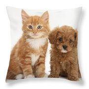 Cavapoo Puppy And Kitten Throw Pillow