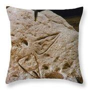 Cave Art: Vulva Throw Pillow