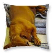 Cb Lazy July Afternoon Throw Pillow