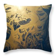 Cb1.020355 Throw Pillow