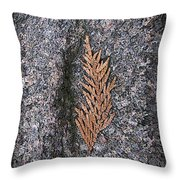 Cedar On Granite Throw Pillow