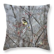 Cedar Wax Wing 3 Throw Pillow