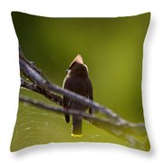 Cedar Waxwing Perched In Tree Throw Pillow