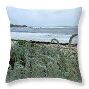 Celadon Seascape Throw Pillow