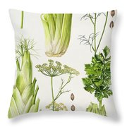 Celery - Fennel - Dill And Celeriac  Throw Pillow by Elizabeth Rice