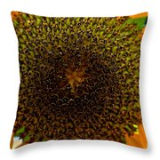 Center Throw Pillow