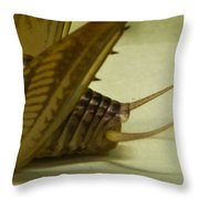 Cerci Of Cave Cricket Throw Pillow