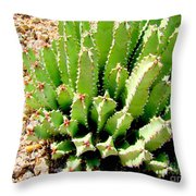 Cereus Peruvianis Cactus Throw Pillow