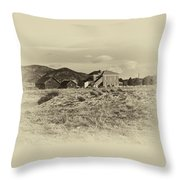 Chaffee County Poor Farm Print Throw Pillow